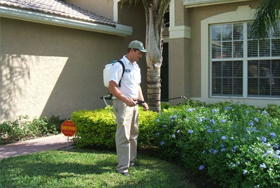 Residential Pest Control Services Chattanooga
